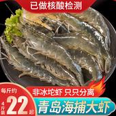 虾鲜活速冻特大超大基围虾冷冻4斤新鲜对虾海虾青岛大虾青虾盒装