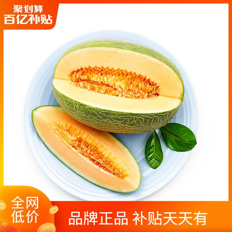 【百果园店】A级-哈密瓜沙漠蜜瓜7斤以上 山东甜瓜新鲜水果包邮