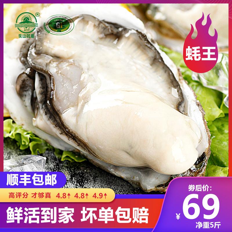 顺丰包邮 乳山生蚝海鲜 水产 鲜活 即食新鲜牡蛎海蛎子5斤一箱