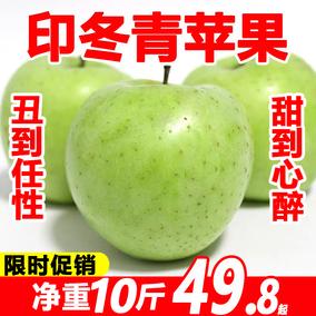 烟台印冬印度青老品种10斤新鲜苹果