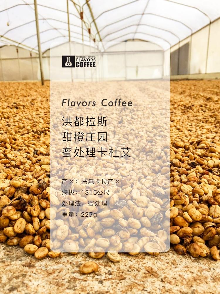 斯奔x凑味 洪都拉斯甜 橙庄园 蜜处理马尔卡拉精品手冲咖啡豆227g