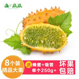 火参果8个新鲜灭霸种植同款角瓜