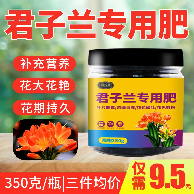君子蘭專用肥君子蘭肥料室內家用有機營養液花肥氮磷鉀復合肥開花