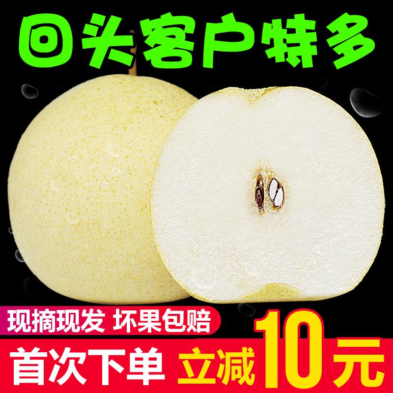 启灵果 新鲜梨子10斤老树酥梨带箱冰糖雪梨当季水果砀山香梨包邮