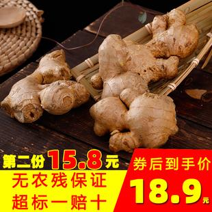 无农残老姜母 5斤出口生姜食用菜姜二年生月子姜广西高山姜白姜10