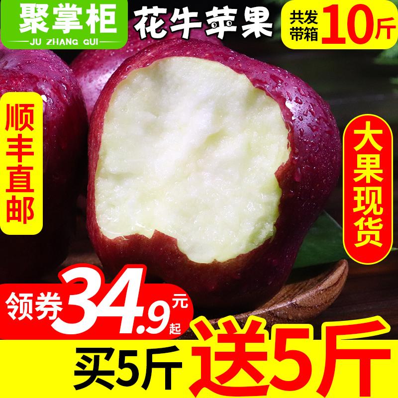 【买1送1】甘肃天水花牛苹果当季水果新鲜包邮蛇果75mm大带箱10斤