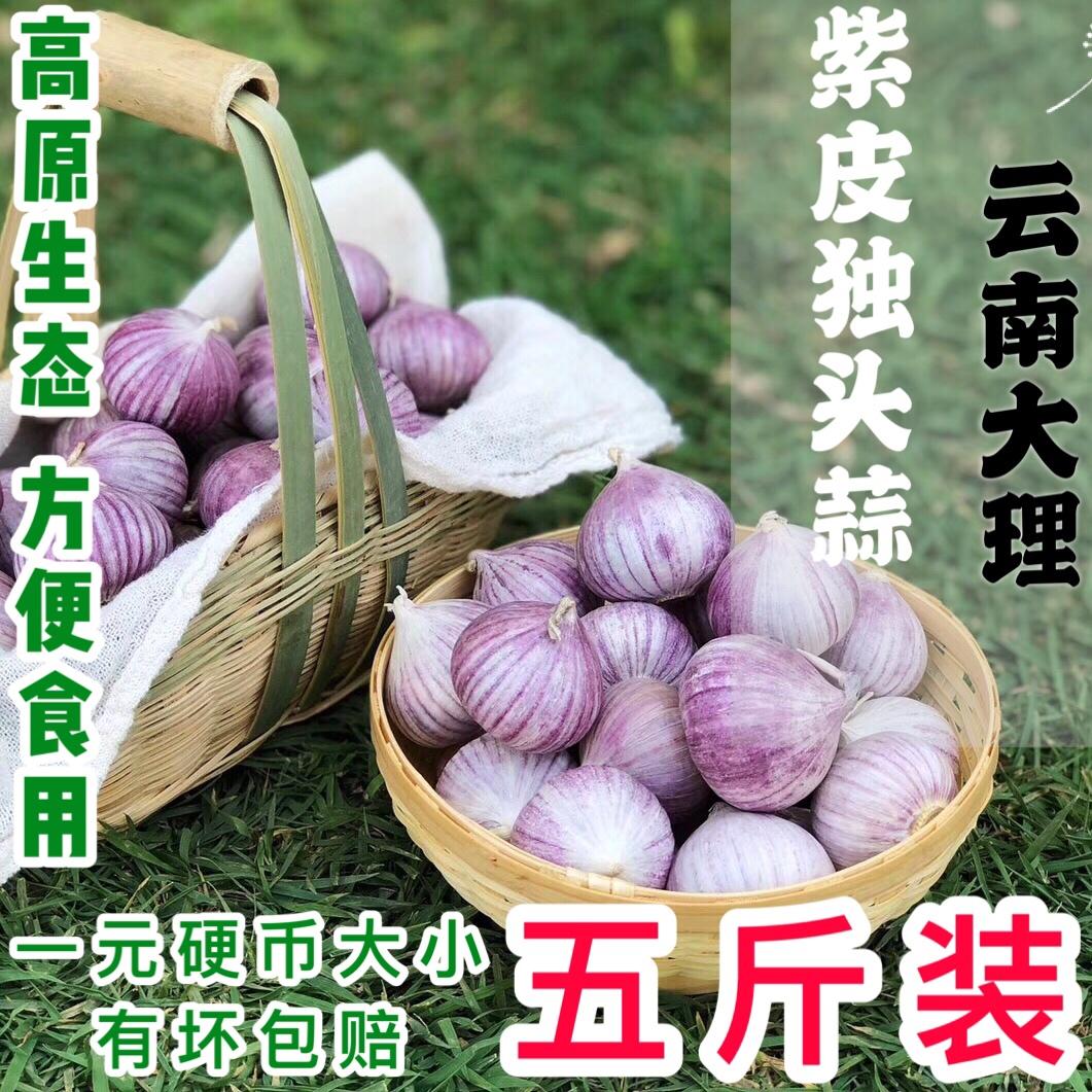 独头蒜紫皮大蒜头干蒜5斤云南蒜独蒜腊八蒜新鲜大蒜蔬菜独大蒜头