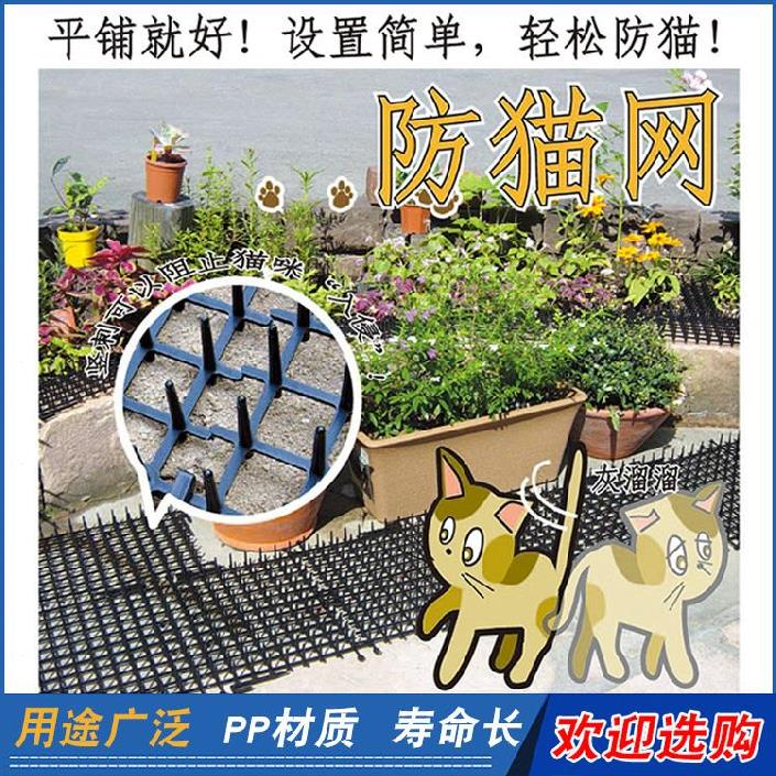 Pet protection net plant equipment new product thickened painting box protective pad iron art childrens cat repellent artifact thorn pad parabolic