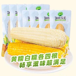 世际德力真空早餐甜粘玉米新鲜黑糯玉米棒苞米粒黏玉米8棒组合装