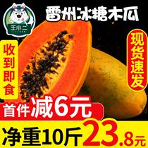 雷州红心牛奶木瓜整箱应季冰糖青木瓜大木瓜新鲜水果当季包邮10斤