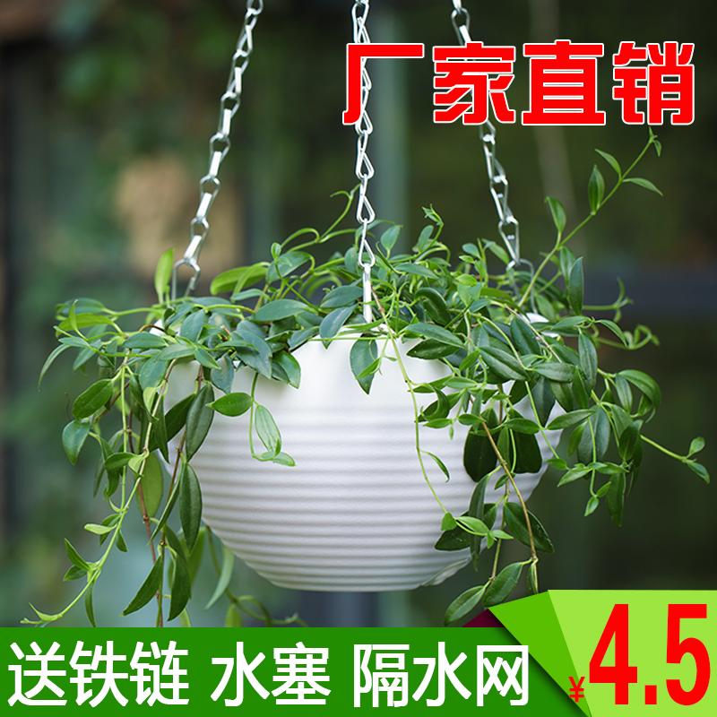 吊兰吊篮花盆垂吊盆悬挂式挂钩养种绿萝专用的室内自吸水塑料花盆