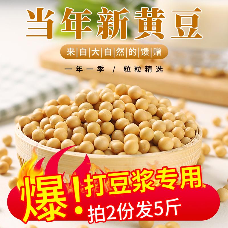 鲸小侠东北新黄豆打豆浆专用黑龙江大粒大豆2袋2斤生豆芽农家自种