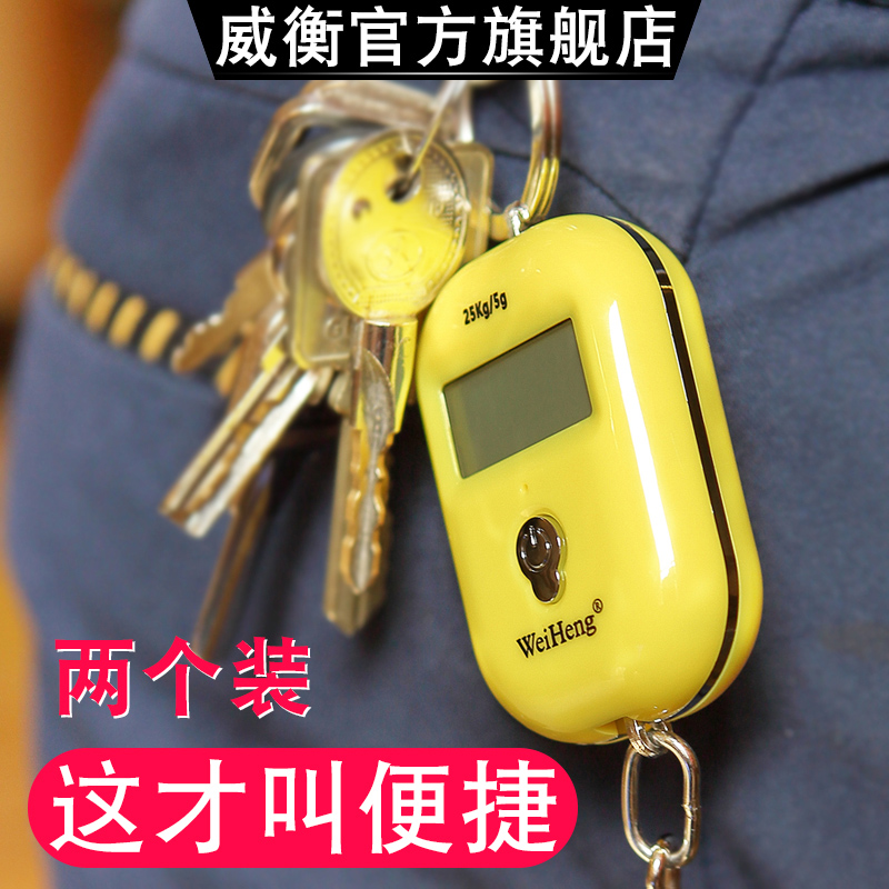 Electronic scale hand scale mini portable high precision small scale mini scale spring scale luggage express scale