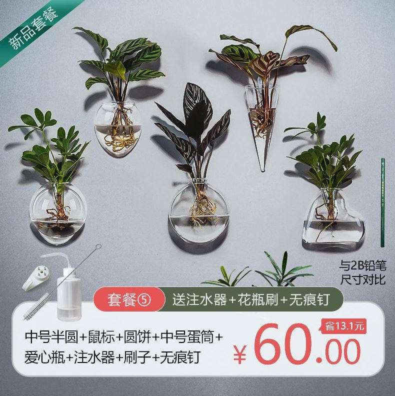 Coffee shop hanging indoor hydroponic vases creative restaurant glass bottles and utensils package mail green rose garden decoration wall
