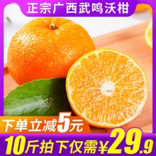 【现摘现发】广西武鸣沃柑5斤