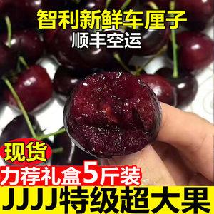 现货空运智利车厘子进口新鲜大樱桃孕妇水果包邮5斤礼盒装超大果
