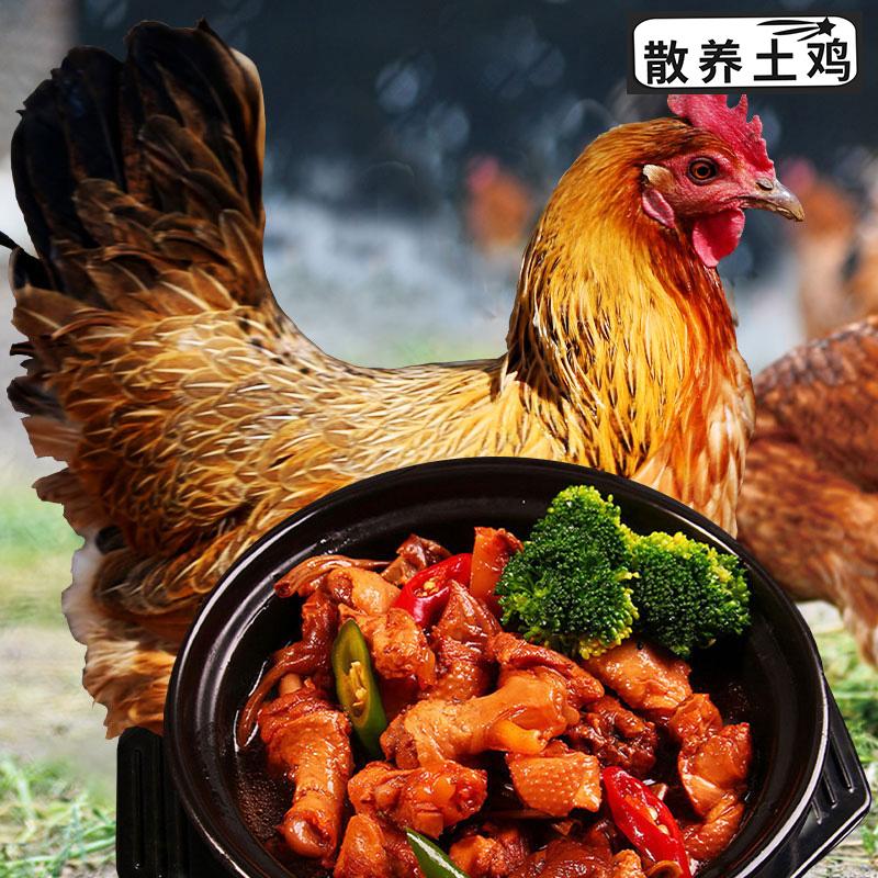 买一送一原品首农百年栗园 散养土鸡1kg 林地散养走地鸡鲜嫩不柴