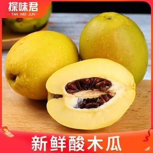 云南酸木瓜5斤青木瓜一整箱当季新鲜现摘特产酸水果泡酒酸脆木瓜3