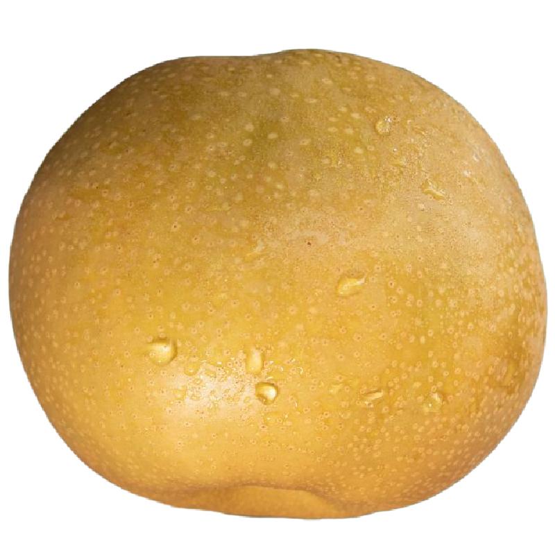 莱阳梨正宗山东莱阳秋月梨精品甜脆当季水果孕妇特级水果整箱10斤