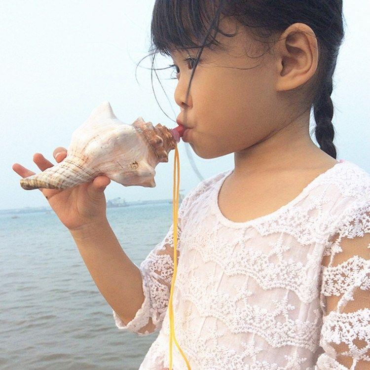 。 Trumpet horn large conch toy whistle children creative gift small ornaments natural shell technology