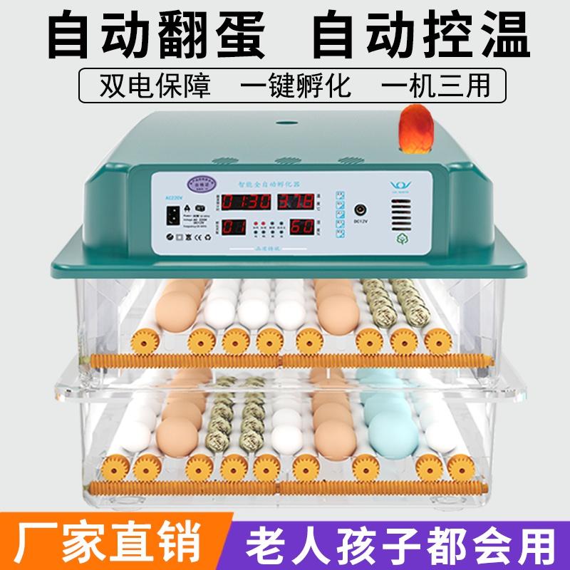 。二队水床孵化机全自动小型家用型孔雀孵蛋器鸭鹅鸽子小鸡孵化。