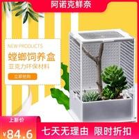 爬虫爬宠昆虫饲养盒螳螂饲养盒竹节虫饲养盒螳螂网箱昆虫网箱。