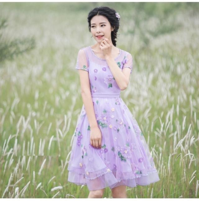 2020 Fireworks New Womens embroidered mesh slim temperament age reducing dress dress dress