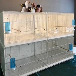 白色观赏笼鸟类育雏笼繁殖鸟笼子低碳钢材PP鸟类飞行笼芙蓉鸟笼。