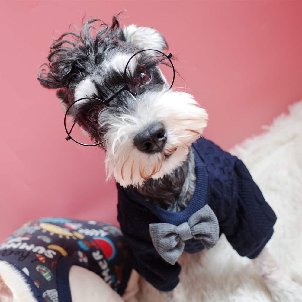 宠物师爷圆形小眼镜 装饰道具太阳眼镜 小型犬眼镜 猫咪眼镜 狗狗