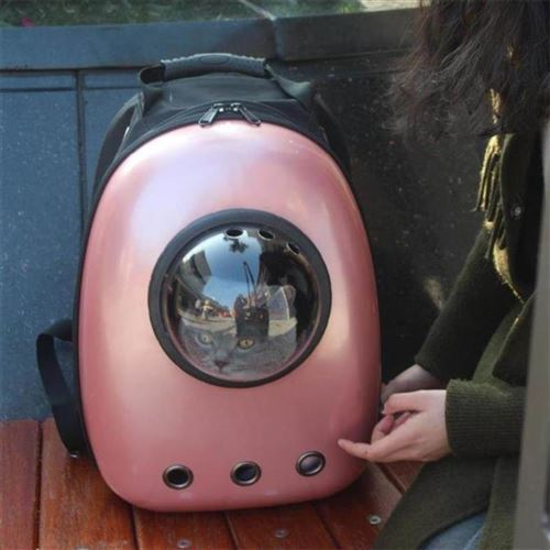 2021 dog bear medium cat cage portable out simple take out cabin pet backpack bag with new products