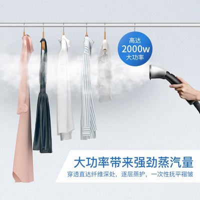 Litang lt-9 all copper interface high-power fabric clothing store commercial steam hanging ironing machine household electric iron