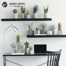 Creative Nordic home furnishings, meat cactus emulation, plant potted ornaments, artificial flowers, green plants, indoor furnishings.