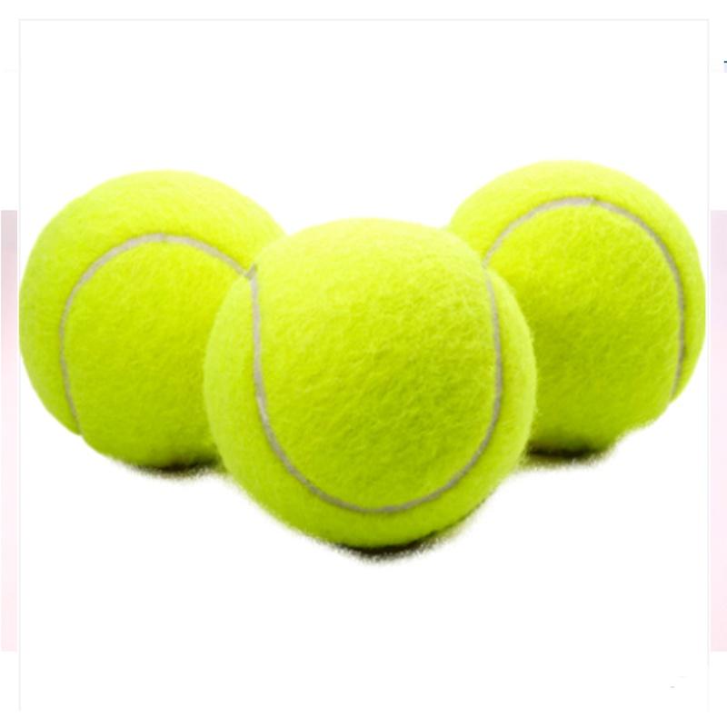 狗狗玩具O球金毛泰迪弹力球耐咬磨牙网球宠物幼犬拉布拉多小狗玩