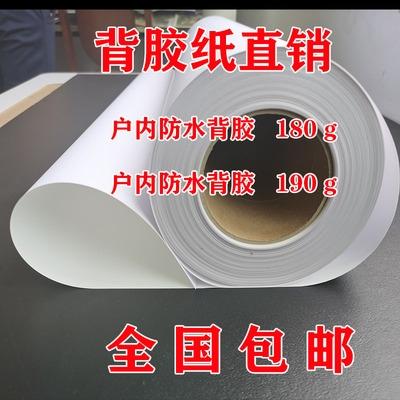 190克哑面双墨PP背胶相纸卷筒户内防水颜染料墨水专用无框画影。