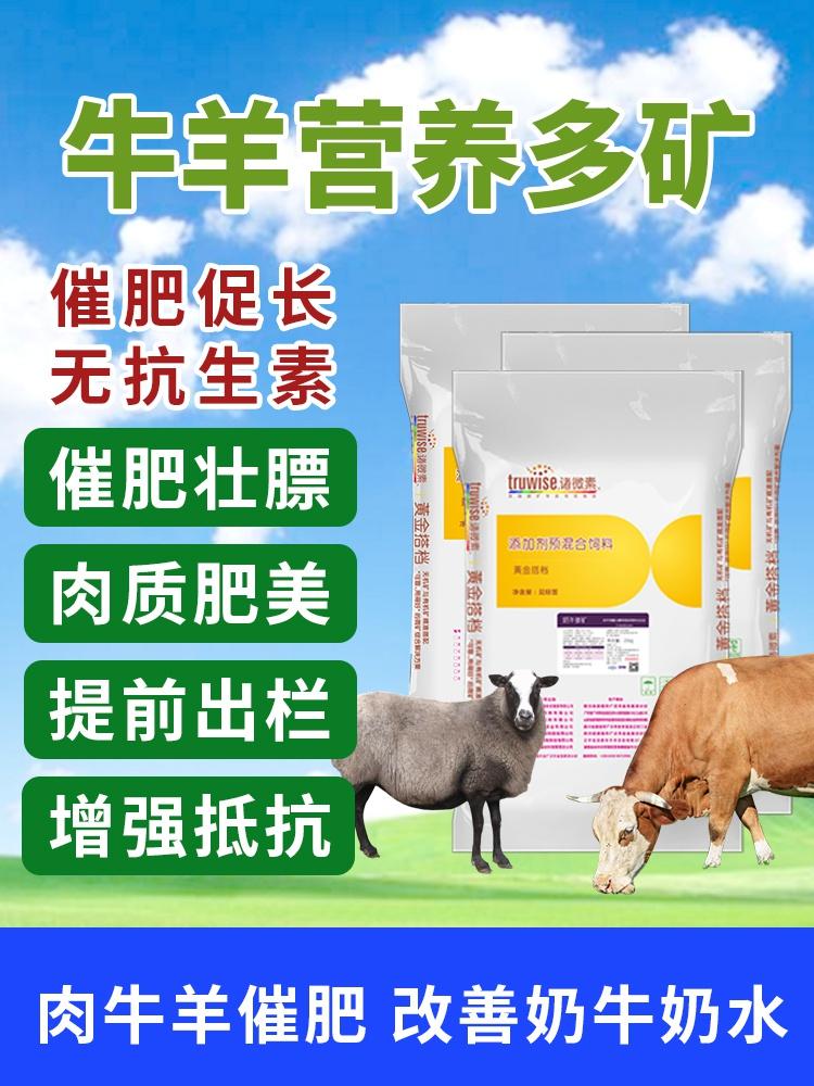 微量元素兽用肉牛预混料肉羊奶牛多矿混合型饲料添加剂促生长催。