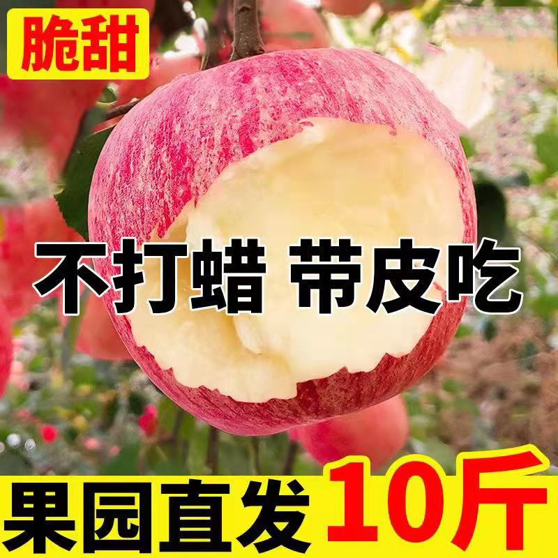 陕西红富士苹果水果新鲜当季水果丑苹果整箱10当季冰糖心脆甜批发