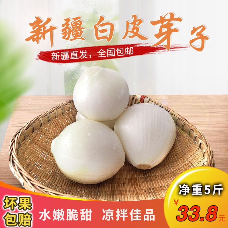 新疆皮牙子白皮洋葱生吃凉拌甜味食材5斤装新鲜蔬菜洋葱产地直发