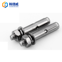 304 stainless steel expansion screws with long expansion bolts pull burst hook pipe fittings screw M6 M8 M10