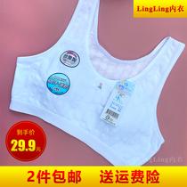 台湾一王美牌少女文胸学生背心女童发育期薄款无钢圈女生内衣9613