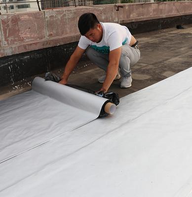 丁基防水胶带屋顶补漏材料楼顶强力防漏水贴纸房屋卷材神器堵漏王 - 封面