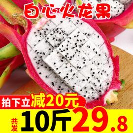越南白心火龙果新鲜10斤当季热带进口水果白肉火龙果应季批发包邮