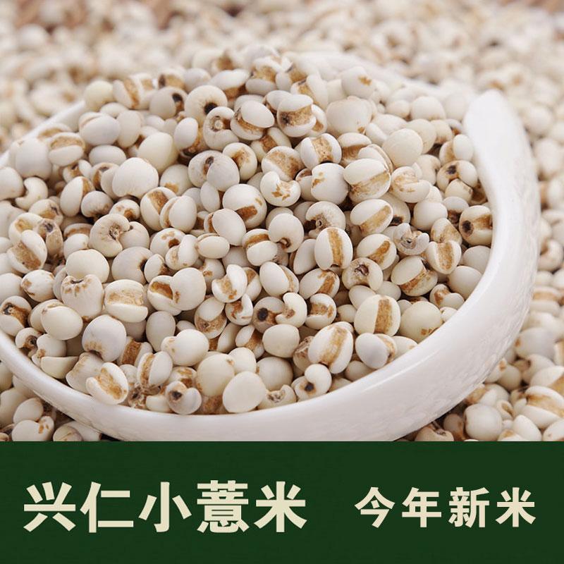 小粒薏米 贵州兴仁薏米仁 薏苡仁 薏仁米配红豆 五谷杂粮500g