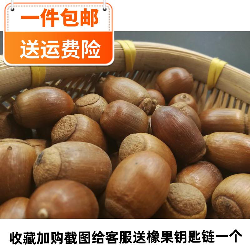 Sichuan wild natural oak fruit green stick tree fruit DIY manual gyro material chinchilla 250g package mail