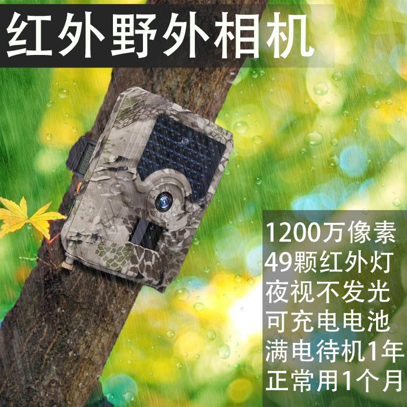 Фотокамеры Артикул 588684022130