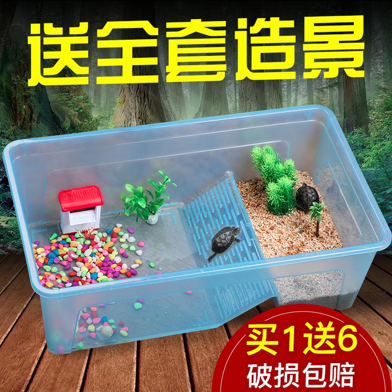 乌龟缸带晒台养龟的专用缸小型养乌龟水陆缸乌龟活体龟箱大型龟缸