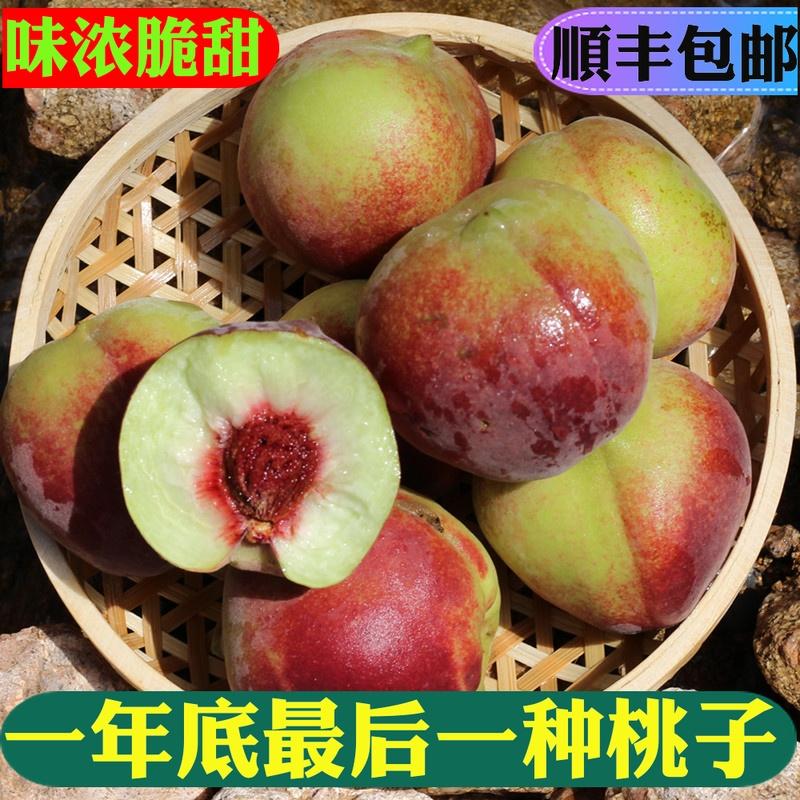 山东青州蜜桃 冬桃脆甜离核桃子新鲜水果小毛桃冬雪蜜非水蜜桃5斤