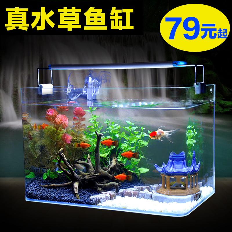 真水草玻璃�~缸水族箱小型客�d桌面迷你生�B草缸�b�造景金�~缸