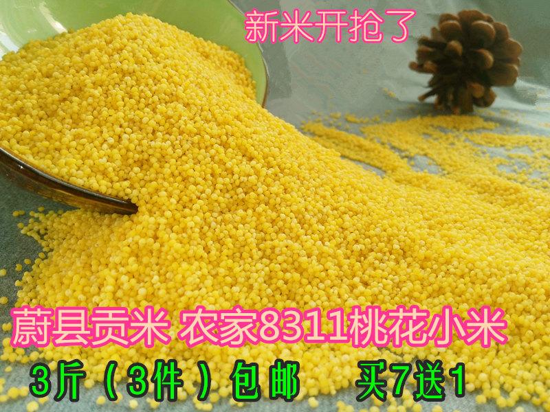 3斤装张家口特产河北蔚县贡米桃花农家黄小米月子米宝宝辅食