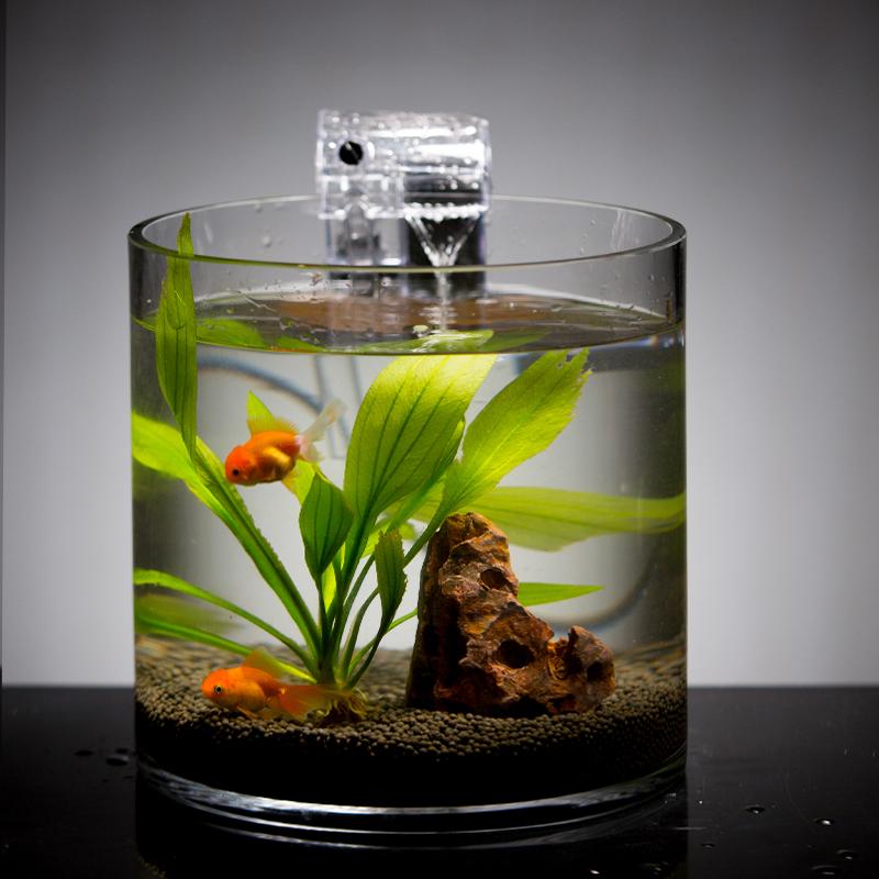 圆柱大型客厅直筒小型水培玻璃鱼缸