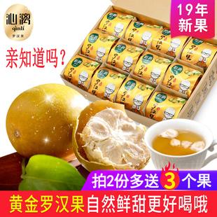 沁漓黄金罗汉果干果广西桂林特产永福低温脱水罗汉果茶小包装泡茶
